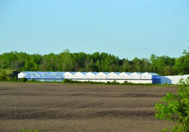 The cannabis industry in Haldimand: A look at the coming cannabis facilities near you