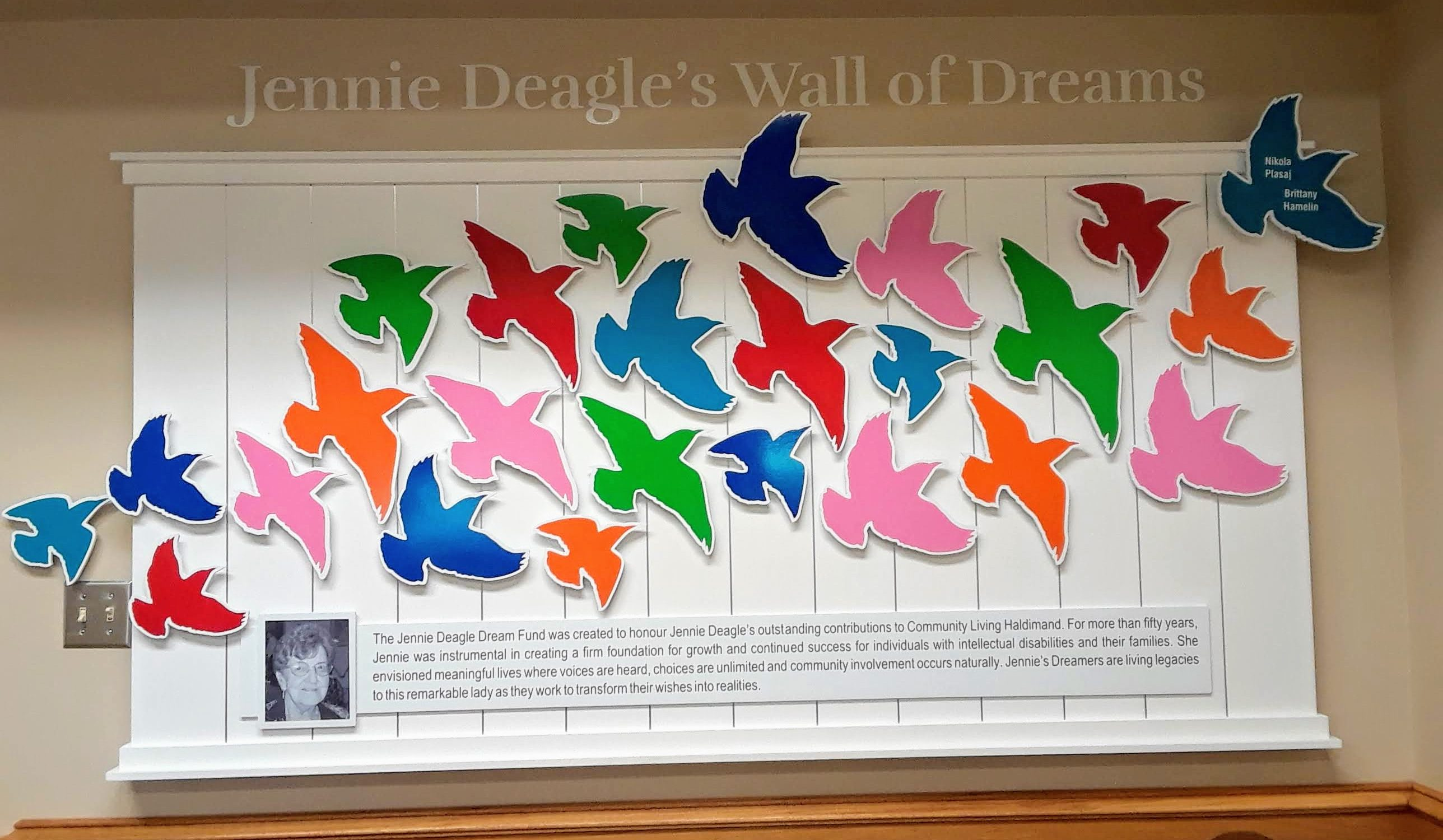 Art piece on wall with multiple, colourful birds flying upwards