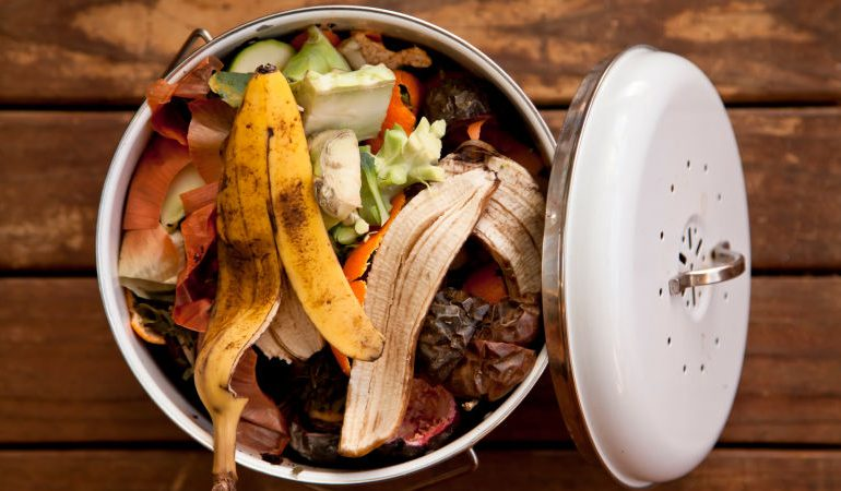 The food waste epidemic