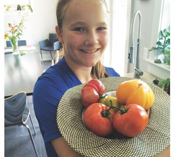 Haldimand Horticultural Society update