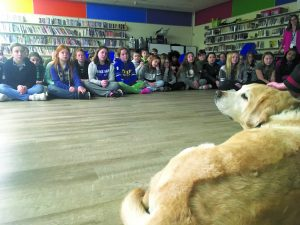Dog in front of class of children.