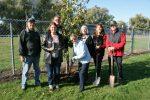 Memorial trees recognize past Haldimand Horticultural Society members