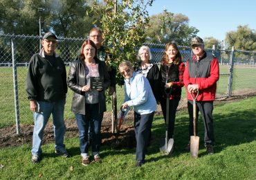 Memorial trees recognize past Haldimand Horticultural Society members