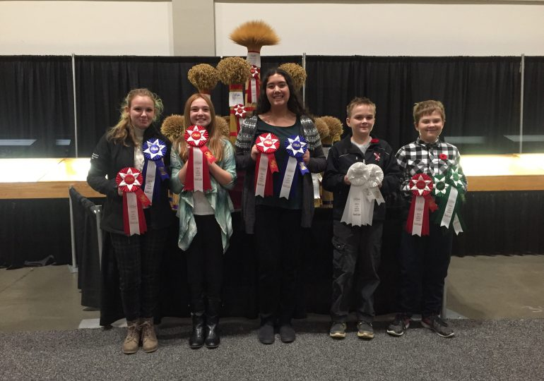Haldimand 4-H competes at Royal Winter Fair