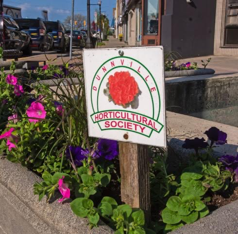Horticultural Society adds some colour to Dunnville