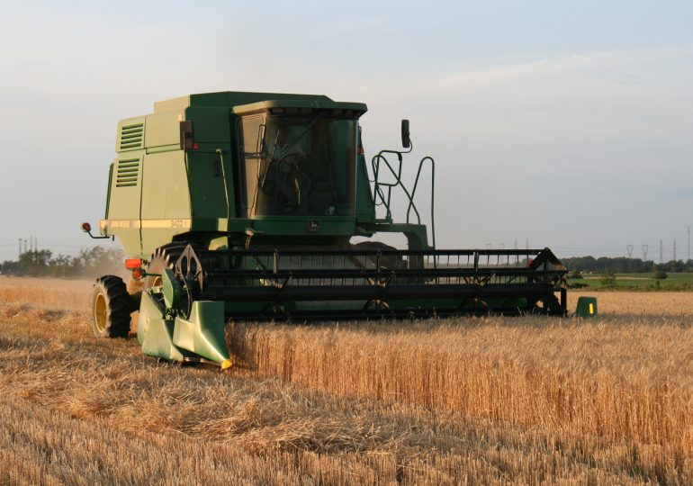 Hot, dry summer impacting farmers
