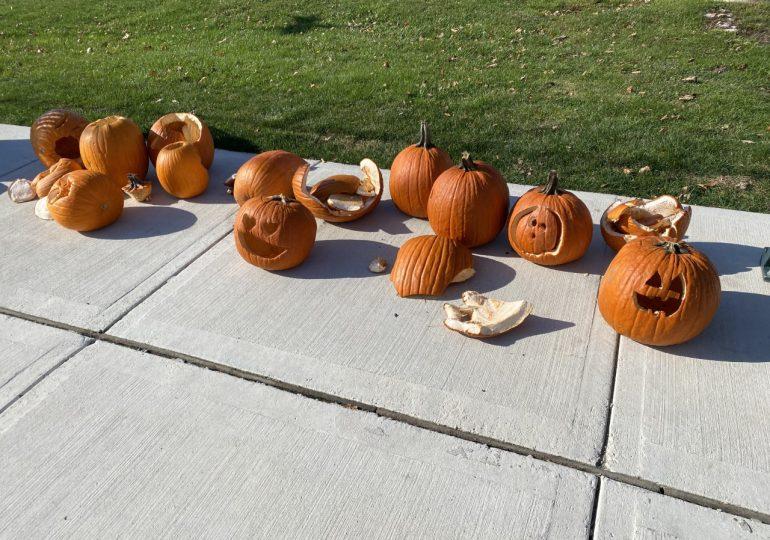 Pumpkin Row vandalized