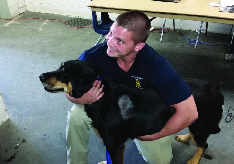 Niagara SPCA works  tirelessly to shelter  Haldimand's stray animals
