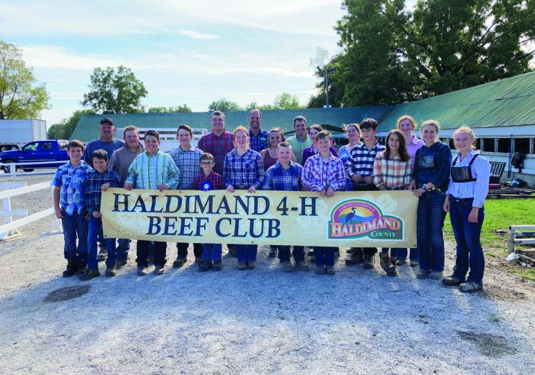 Haldimand Beef Club news report
